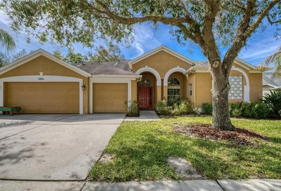 5915 Falconwood Place Lithia FL 33547