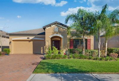 19503 Sea Myrtle Way Tampa FL 33647