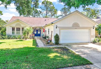 7003 Pine Hollow Drive Mount Dora FL 32757
