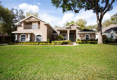 6224 Wild Orchid Drive Lithia FL 33547