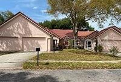 1150 Woodleaf Court Palm Harbor FL 34684
