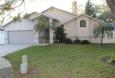 801 Kriswell Court Palm Harbor FL 34683