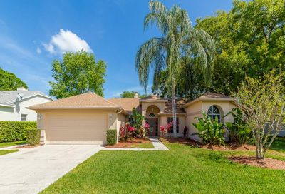 1039 Silcox Branch Circle Oviedo FL 32765