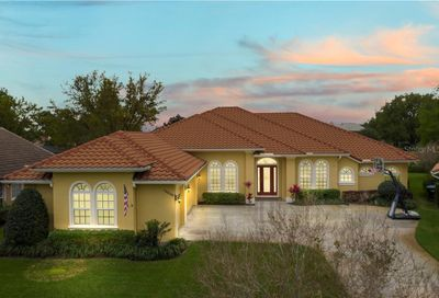 14040 Fairway Willow Ln Winter Garden FL 34787