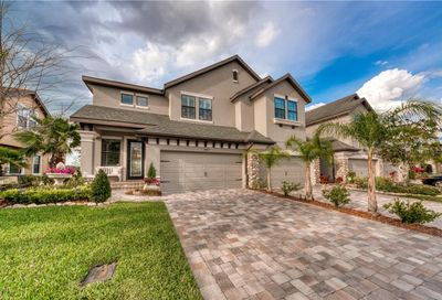 4689 Wandering Way Wesley Chapel FL 33544