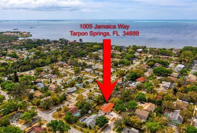 1005 Jamaica Way Tarpon Springs FL 34689