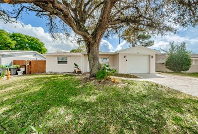 1050 Brass Lane Holiday FL 34691