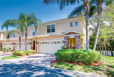 1403 Hillview Lane Tarpon Springs FL 34689