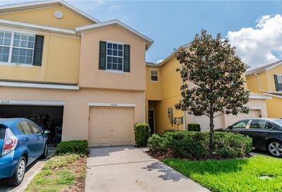 5026 White Sanderling Court Tampa FL 33619