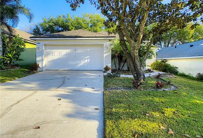 17403 Summer Oak Lane Clermont FL 34711
