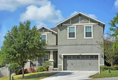 30035 Messara Cove Mount Dora FL 32757
