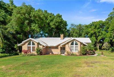 7273 Chesterhill Circle Mount Dora FL 32757
