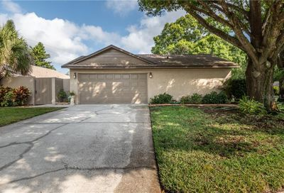 604 Channing Drive Palm Harbor FL 34684