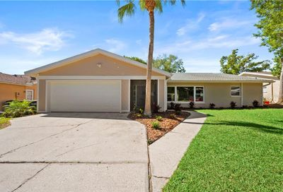 3131 Hillside Lane Safety Harbor FL 34695