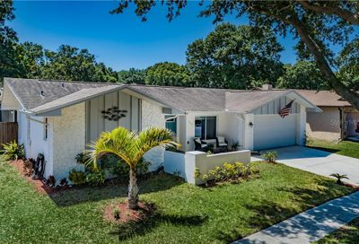 106 Meadowcross Drive Safety Harbor FL 34695