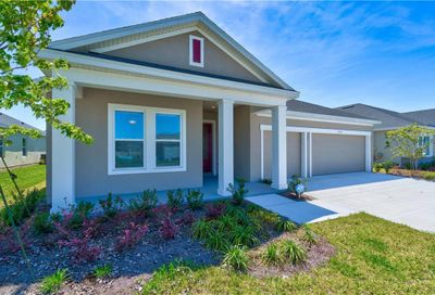 17716 Passionflower Circle Clermont FL 34714