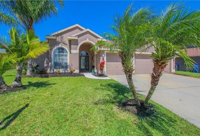 2310 Wood Pointe Drive Holiday FL 34691