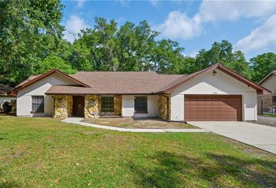 706 Hidden Lake Drive Brandon FL 33511
