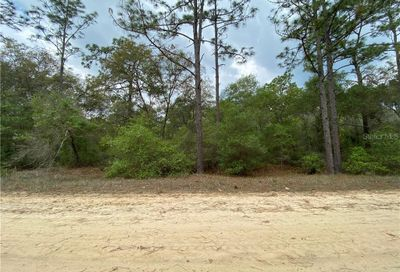 305 Incline Road Satsuma FL 32189
