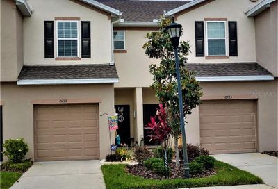 8745 Turnstone Haven Place Tampa FL 33619