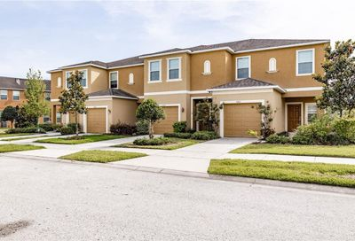 8419 Painted Turtle Way Riverview FL 33578