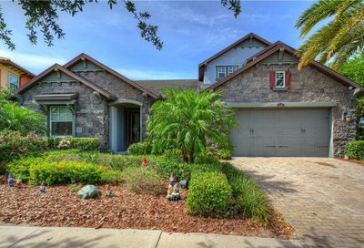 11885 Frost Aster Drive Riverview FL 33579