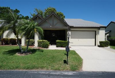 3481 Woodridge Lane Palm Harbor FL 34684