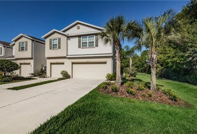 8805 Turnstone Haven Place Tampa FL 33619