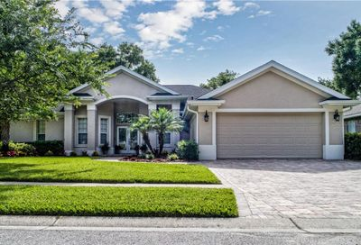 7003 Shadowood Circle Mount Dora FL 32757
