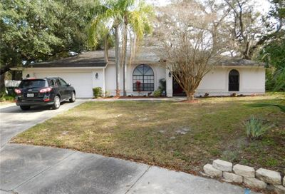 1122 Knollwood Drive Safety Harbor FL 34695