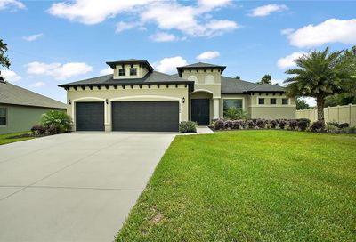 32106 Spring Meadow Court Sorrento FL 32776