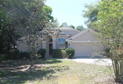 302 Walk View Court Apopka FL 32703