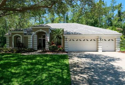 3969 Brightside Lane Palm Harbor FL 34685