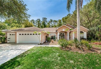 2511 Appaloosa Trail Palm Harbor FL 34685