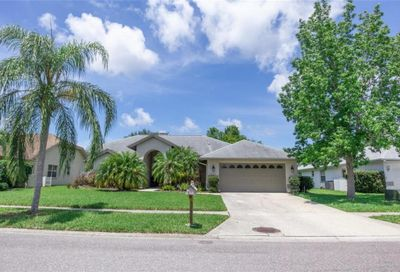 1658 Stable Trail Palm Harbor FL 34685