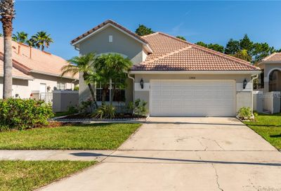 13454 Lake Turnberry Circle Orlando FL 32828
