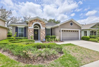 15850 Starling Water Drive Lithia FL 33547