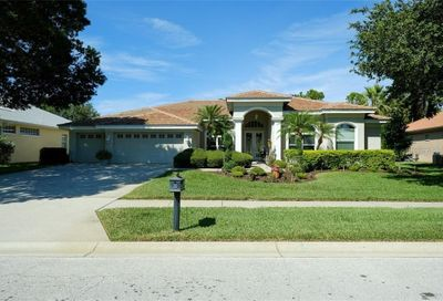 3721 Johnathon Avenue Palm Harbor FL 34685