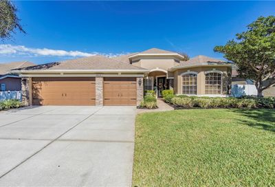 12919 Castlemaine Drive Tampa FL 33626
