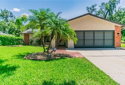 2863 Lomond Drive Palm Harbor FL 34684