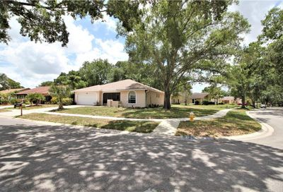 3220 Hilary Circle Palm Harbor FL 34684