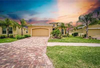 1833 Pacific Dunes Drive Sun City Center FL 33573