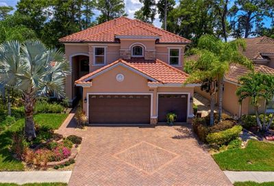 2630 Grand Lakeside Drive Palm Harbor FL 34684