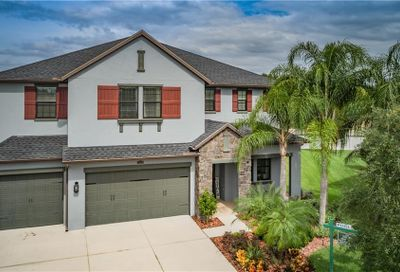 12615 Lillyreed Court New Port Richey FL 34655
