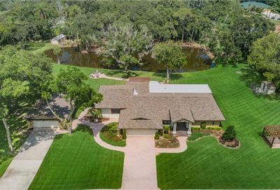 1390 Sunray Drive Palm Harbor FL 34683