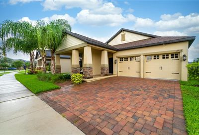 12923 Strode Lane Windermere FL 34786