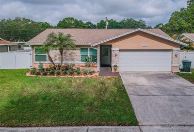 3115 Coventry Lane Safety Harbor FL 34695