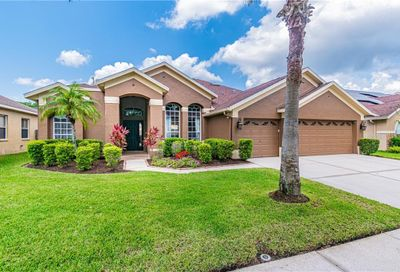 12430 Bristol Commons Circle Tampa FL 33626