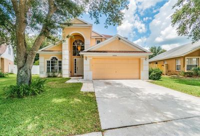 24709 Laurel Ridge Drive Lutz FL 33559