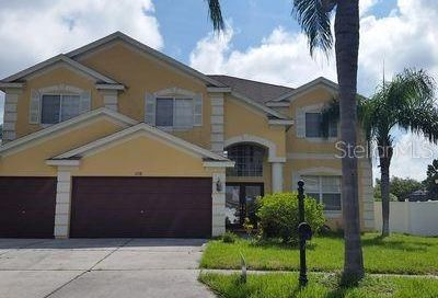 1738 Pink Guara Court Trinity FL 34655
